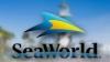 SeaWorld Kids - MEET THE ANIMALS