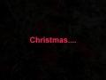 An Australian Christmas through eyes of a chi