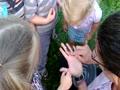 Preschoolers and a Fall Cicada