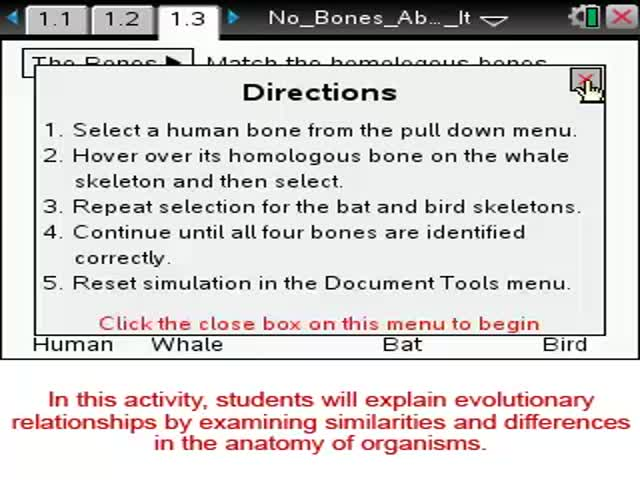 No Bones About It  [Science Nspired Preview V