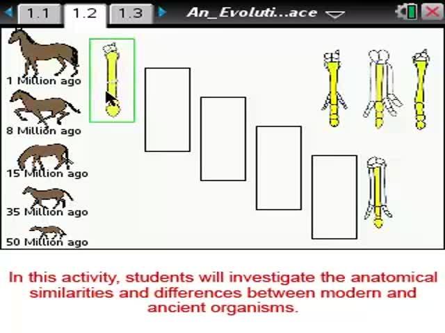 Evolutionary Horse Race [Science Nspired Prev