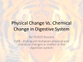 7.6B Physical Change Vs. Chemical Change in Digestive System RETEACH