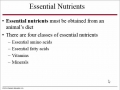 Chapter 33 Animal Nutrition Mini Lecture