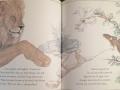 Mouse & Lion by Rand Burkert & Nancy Ekholm Burkert