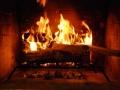 SocialSciencesEL416 Fireside Chat Podcast