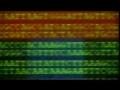 Explaining The Human Genome Project