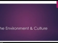 The Environment & Culture