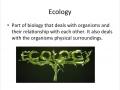 Basic Ecology: Grant, Wilson, Zane, Bryson 7th Period