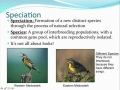 4.1  # 2 Biodiversity in Ecosystems