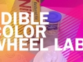 Edible Color Wheel Lab Video