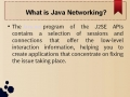 What is Java Networking?