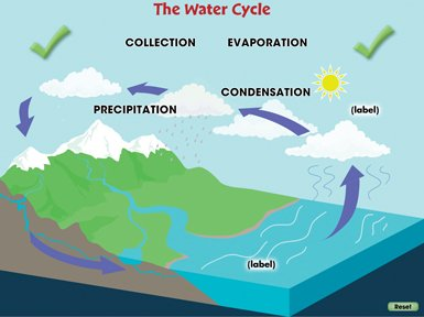 Water Cycle Collection