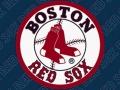 Boston Red Sox Summer Math Program - Surface