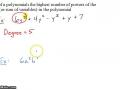Algebra I @ Harrison: Polynomial Lingo