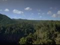 Rainforest Voiceover