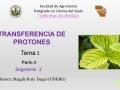 Transferencia de protones (segmento 2)