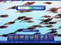 World Book: Advanced Search & Educator Tools