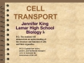 U3 V4 Cell Memrane