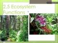 2.5#1 Ecosystem Functions