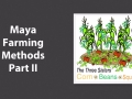 Maya Farming Methods Part II