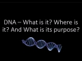 Czerepak Science Lab Video