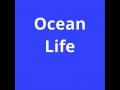 Ocean Life Book 2