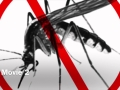 Malaria Public Health Announcement/HLT-555/Environmental Health