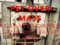 Pet Over Mass