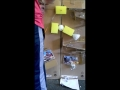 Sterling Rube Goldberg