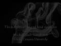 PSA dangers of second hand smoke