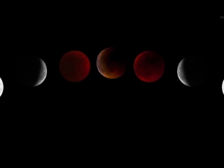 Total Eclipse of the Moon- NASA