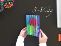 3-Way Agamograph Instructions