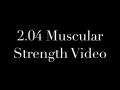 2.04 Muscular Strength Video