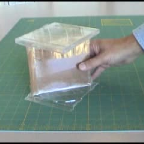 how to create your own ant farm