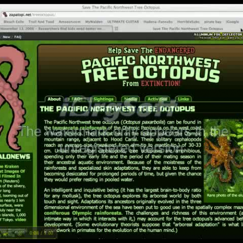 save the tree octopus | Tree Repulseweb.net