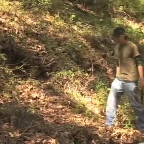 Basic Survival Skills: Basic Wilderness Survival Skills _ Wilderness