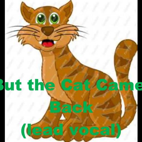 cat loops meme
